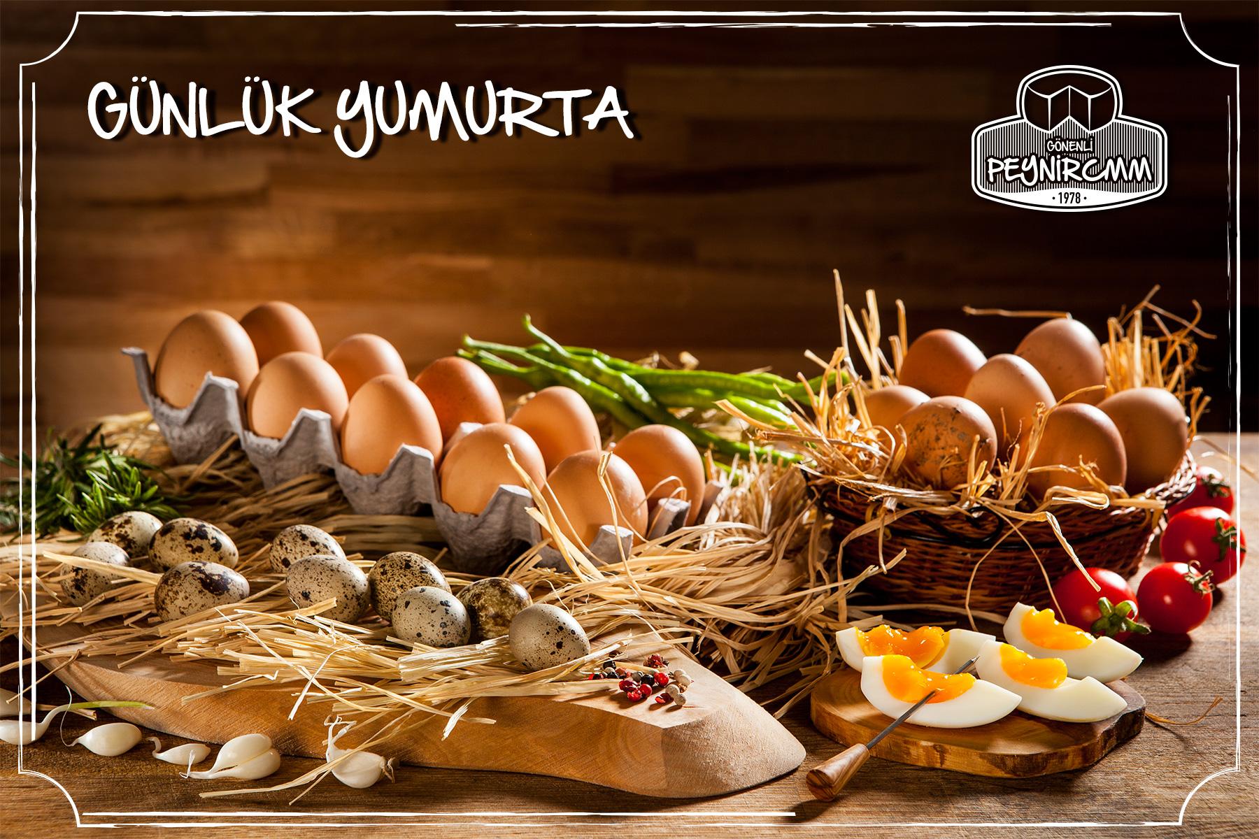 Gonenli_peynircmm_fotograf_7_Gunluk_Yumurta